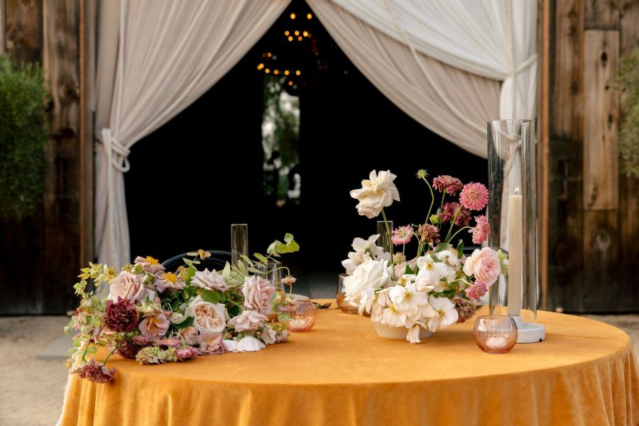 Q & A with Wild Heart Events
