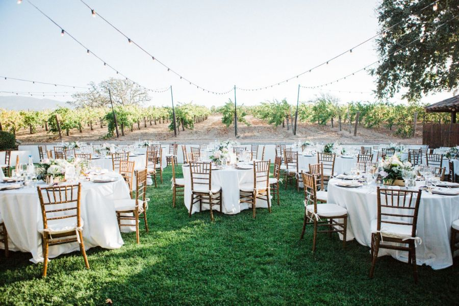 Getting Married At A Vineyard How Much Does It Cost Gainey Vineyard