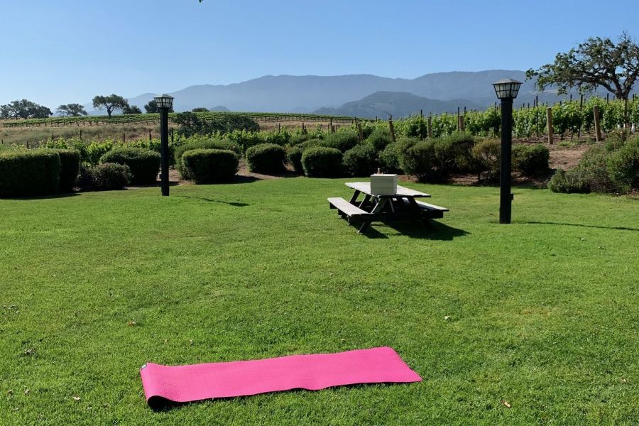 Vineyard Yoga Class & Wine Tasting